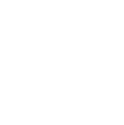 Young Food Network